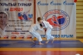 2015 Открытый турнир КФО по дзюдо, п. Симеиз